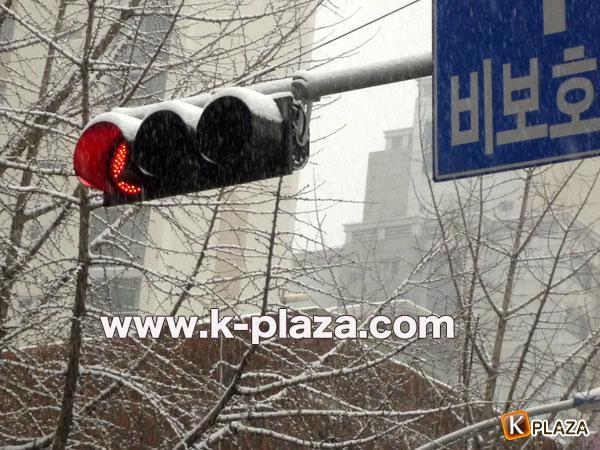 ソウルに大雪注意報!積雪は7.6㎝を記録