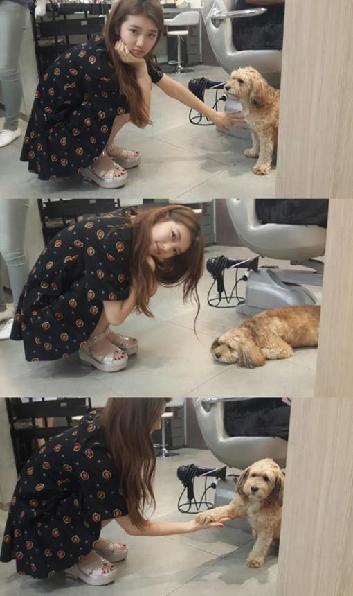 missAスジ、「はい、お手~!」と、イ・ヒョリの愛犬とツーショット写真公開